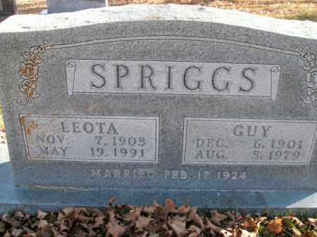 SPRIGGS, LEOTA - Boone County, Arkansas | LEOTA SPRIGGS - Arkansas Gravestone Photos