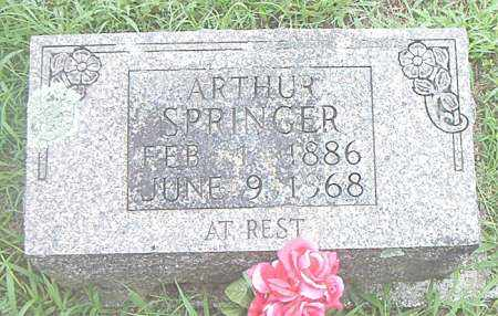SPRINGER, ARTHUR - Boone County, Arkansas | ARTHUR SPRINGER - Arkansas Gravestone Photos