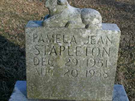 STAPLETON, PAMELA JEAN - Boone County, Arkansas | PAMELA JEAN STAPLETON - Arkansas Gravestone Photos