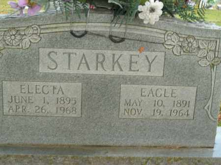 STARKEY, EAGLE - Boone County, Arkansas | EAGLE STARKEY - Arkansas Gravestone Photos