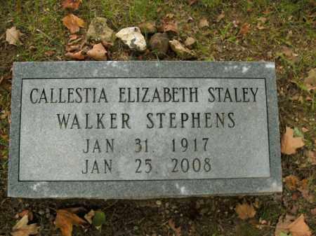 STALEY STEPHENS, CALLESTIA ELIZABETH - Boone County, Arkansas | CALLESTIA ELIZABETH STALEY STEPHENS - Arkansas Gravestone Photos