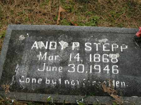 STEPP, ANDY PINK - Boone County, Arkansas | ANDY PINK STEPP - Arkansas Gravestone Photos