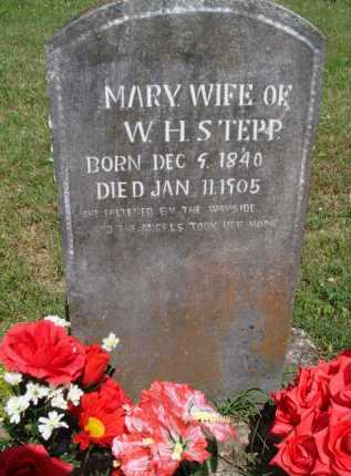 STEPP, MARY - Boone County, Arkansas | MARY STEPP - Arkansas Gravestone Photos