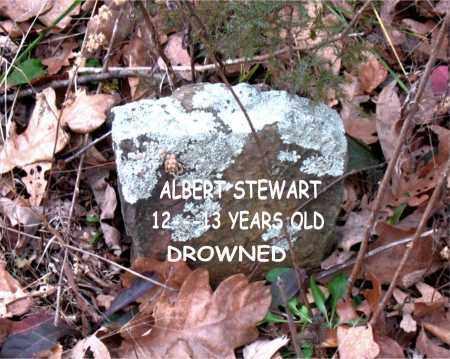 STEWART, ALBERT - Boone County, Arkansas | ALBERT STEWART - Arkansas Gravestone Photos