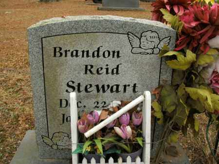 STEWART, BRANDON REID - Boone County, Arkansas | BRANDON REID STEWART - Arkansas Gravestone Photos