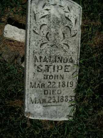 STIPE, MALINDA - Boone County, Arkansas | MALINDA STIPE - Arkansas Gravestone Photos