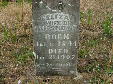 STUDYVIN, ELIZA - Boone County, Arkansas | ELIZA STUDYVIN - Arkansas Gravestone Photos