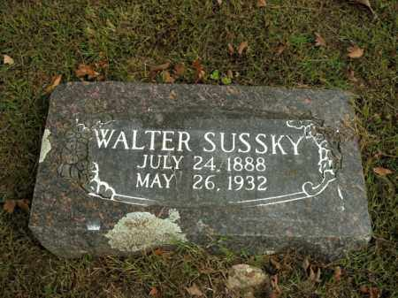 SUSSKY, WALTER - Boone County, Arkansas | WALTER SUSSKY - Arkansas Gravestone Photos
