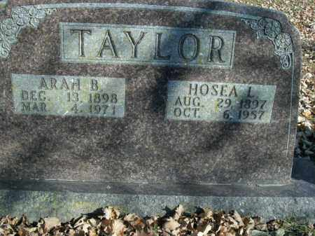 TAYLOR, HOSEA LEE - Boone County, Arkansas | HOSEA LEE TAYLOR - Arkansas Gravestone Photos