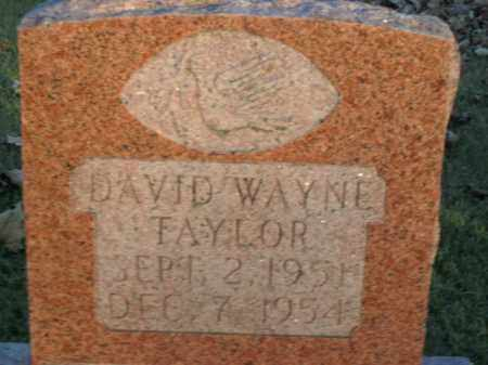 TAYLOR, DAVID WAYNE - Boone County, Arkansas | DAVID WAYNE TAYLOR - Arkansas Gravestone Photos