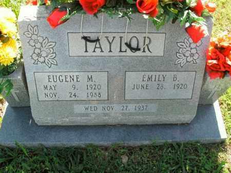 TAYLOR, EUGENE M. - Boone County, Arkansas | EUGENE M. TAYLOR - Arkansas Gravestone Photos