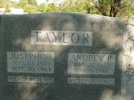 TAYLOR, JOSEPHINE - Boone County, Arkansas | JOSEPHINE TAYLOR - Arkansas Gravestone Photos