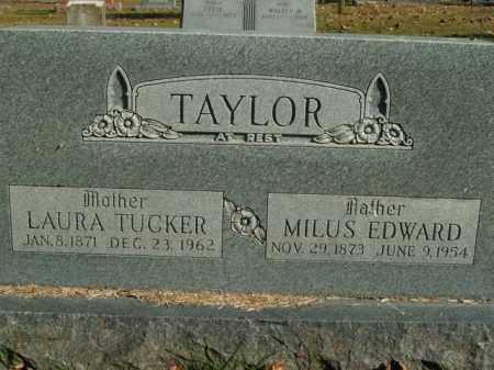 TUCKER TAYLOR, LAURA - Boone County, Arkansas | LAURA TUCKER TAYLOR - Arkansas Gravestone Photos