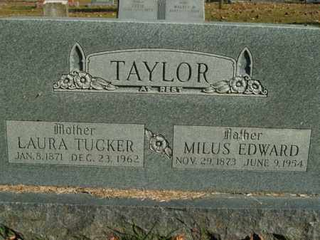 TAYLOR, LAURA - Boone County, Arkansas | LAURA TAYLOR - Arkansas Gravestone Photos