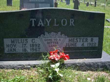 TAYLOR, MILUS G. - Boone County, Arkansas | MILUS G. TAYLOR - Arkansas Gravestone Photos
