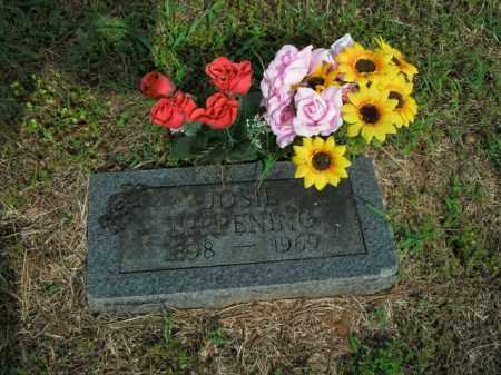 TERPENING, JOSIE - Boone County, Arkansas | JOSIE TERPENING - Arkansas Gravestone Photos
