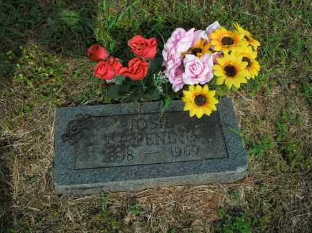 TERPENING, JOSIE - Boone County, Arkansas   JOSIE TERPENING - Arkansas Gravestone Photos