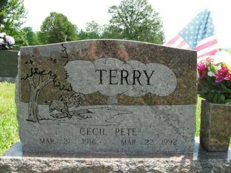 TERRY, CECIL PETE - Boone County, Arkansas | CECIL PETE TERRY - Arkansas Gravestone Photos