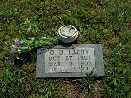 TERRY, O.D. - Boone County, Arkansas | O.D. TERRY - Arkansas Gravestone Photos