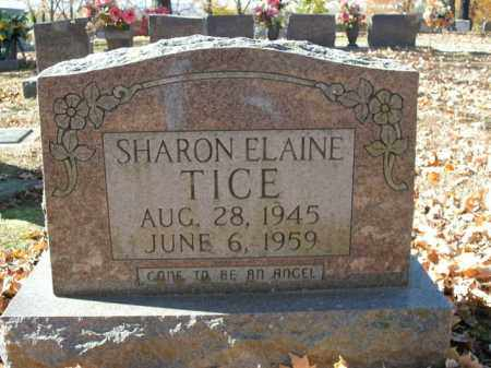 TICE, SHARON ELAINE - Boone County, Arkansas | SHARON ELAINE TICE - Arkansas Gravestone Photos