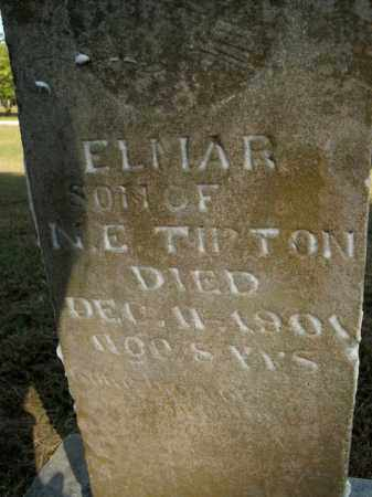 TIPTON, ELMAR - Boone County, Arkansas | ELMAR TIPTON - Arkansas Gravestone Photos