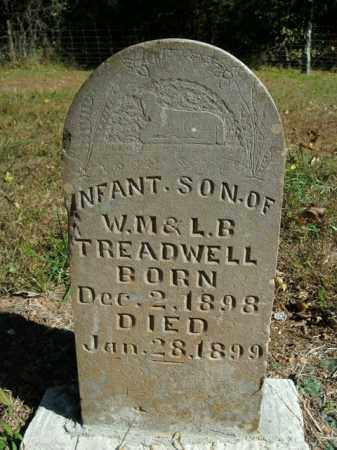 TREADWELL, INFANT SON - Boone County, Arkansas | INFANT SON TREADWELL - Arkansas Gravestone Photos