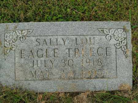 TREECE, SALLY LOU - Boone County, Arkansas | SALLY LOU TREECE - Arkansas Gravestone Photos