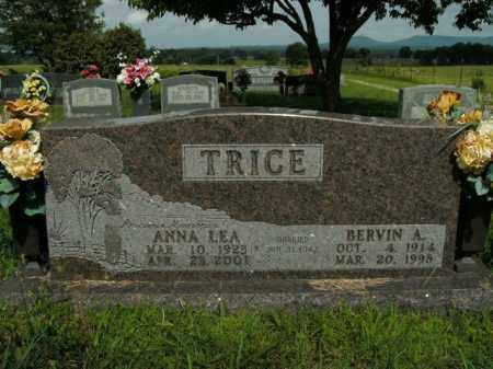 TRICE, BERVIN A. - Boone County, Arkansas | BERVIN A. TRICE - Arkansas Gravestone Photos