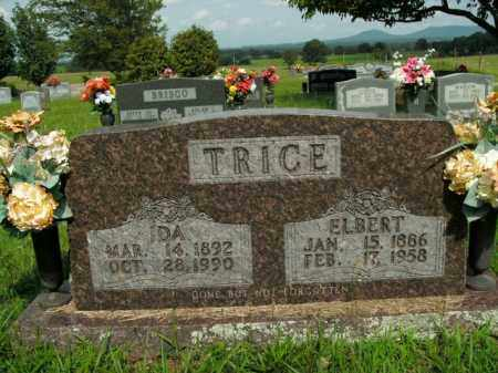 TRICE, IDA MAE - Boone County, Arkansas | IDA MAE TRICE - Arkansas Gravestone Photos