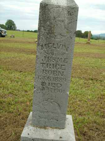 TRICE, MELVIN - Boone County, Arkansas | MELVIN TRICE - Arkansas Gravestone Photos
