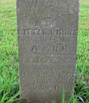TROTTER, BIRDIE - Boone County, Arkansas | BIRDIE TROTTER - Arkansas Gravestone Photos