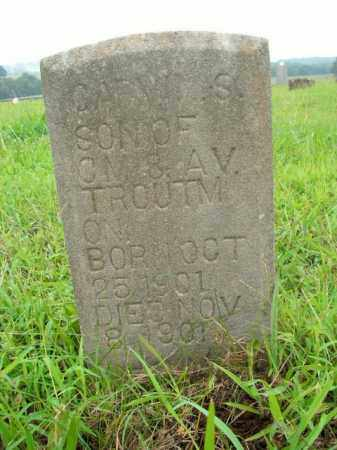 TROUTMAN, CARY S. - Boone County, Arkansas | CARY S. TROUTMAN - Arkansas Gravestone Photos