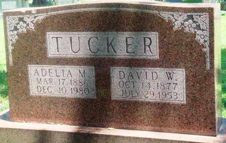 TUCKER, ADELIA M - Boone County, Arkansas | ADELIA M TUCKER - Arkansas Gravestone Photos