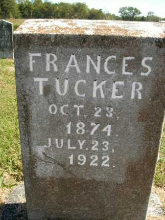 TUCKER, FRANCES - Boone County, Arkansas | FRANCES TUCKER - Arkansas Gravestone Photos