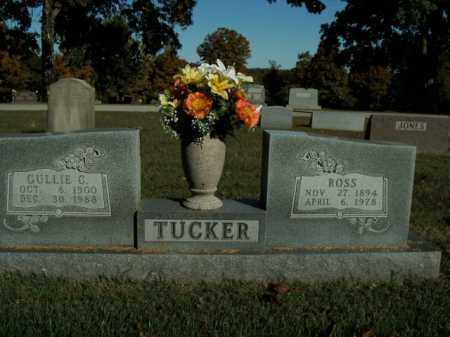 TUCKER, GULLIE CATHERINE - Boone County, Arkansas | GULLIE CATHERINE TUCKER - Arkansas Gravestone Photos