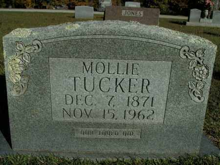 TUCKER, MOLLIE - Boone County, Arkansas | MOLLIE TUCKER - Arkansas Gravestone Photos