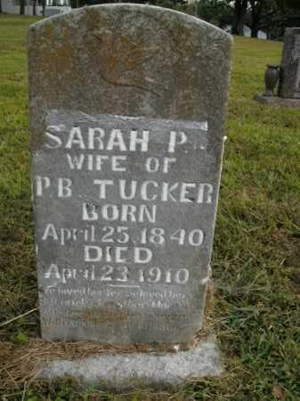 TUCKER, SARAH P. - Boone County, Arkansas | SARAH P. TUCKER - Arkansas Gravestone Photos