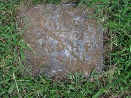 TYSON, ANNA - Boone County, Arkansas | ANNA TYSON - Arkansas Gravestone Photos