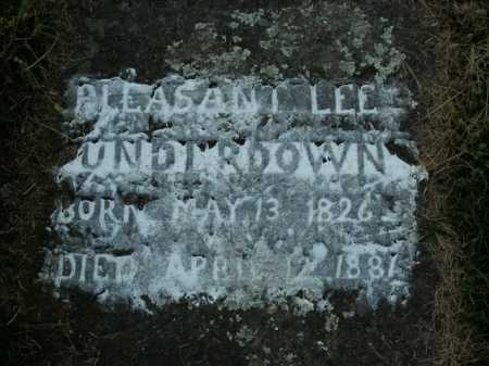 UNDERDOWN, PLEASANT LEE - Boone County, Arkansas | PLEASANT LEE UNDERDOWN - Arkansas Gravestone Photos