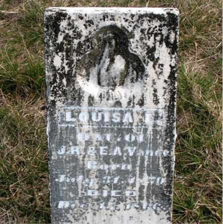 VANCE, LOUISA E. - Boone County, Arkansas | LOUISA E. VANCE - Arkansas Gravestone Photos