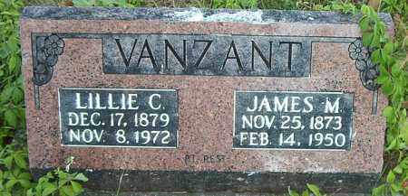 VANZANT, JAMES M. - Boone County, Arkansas | JAMES M. VANZANT - Arkansas Gravestone Photos