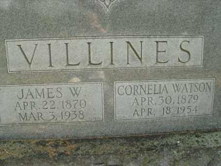 WATSON VILLINES, CORNELIA - Boone County, Arkansas | CORNELIA WATSON VILLINES - Arkansas Gravestone Photos