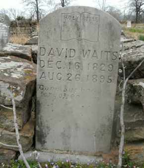 WAITS, DAVID - Boone County, Arkansas | DAVID WAITS - Arkansas Gravestone Photos