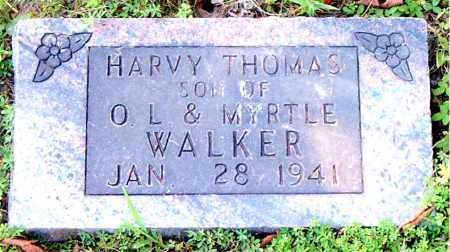 WALKER, HARVY THOMAS - Boone County, Arkansas | HARVY THOMAS WALKER - Arkansas Gravestone Photos
