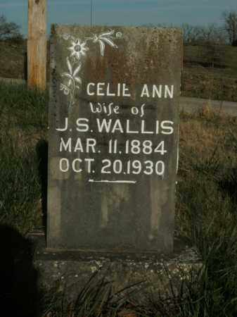 WALLIS, CELIE ANN - Boone County, Arkansas | CELIE ANN WALLIS - Arkansas Gravestone Photos