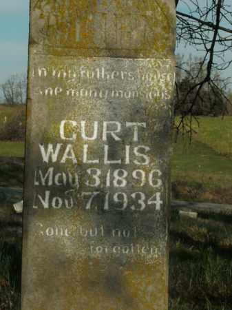 WALLIS, CURT - Boone County, Arkansas | CURT WALLIS - Arkansas Gravestone Photos