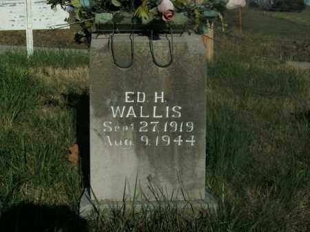 WALLIS, ED H. - Boone County, Arkansas | ED H. WALLIS - Arkansas Gravestone Photos