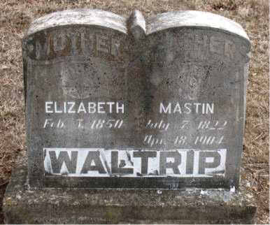 WALTRIP, ELIZABETH - Boone County, Arkansas | ELIZABETH WALTRIP - Arkansas Gravestone Photos