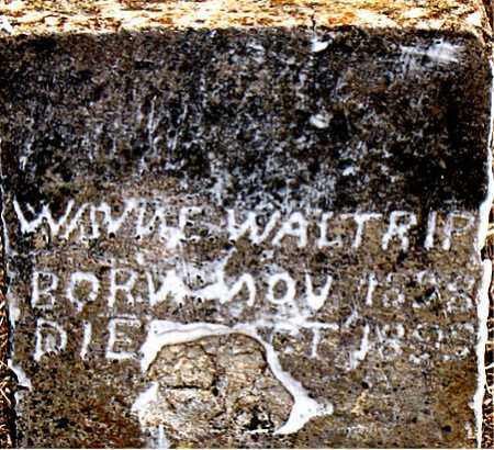 WALTRIP, WAYNE - Boone County, Arkansas | WAYNE WALTRIP - Arkansas Gravestone Photos