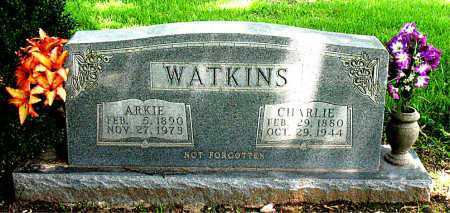 COLLIER WATKINS, ARKIE - Boone County, Arkansas | ARKIE COLLIER WATKINS - Arkansas Gravestone Photos